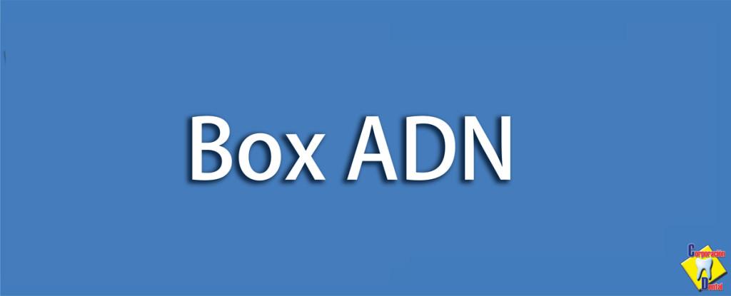 Box-AND